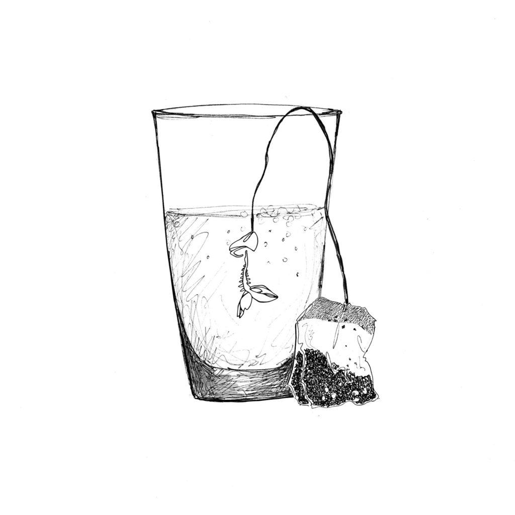 Illustration Silowane Poisson d avril blog silowane-studio