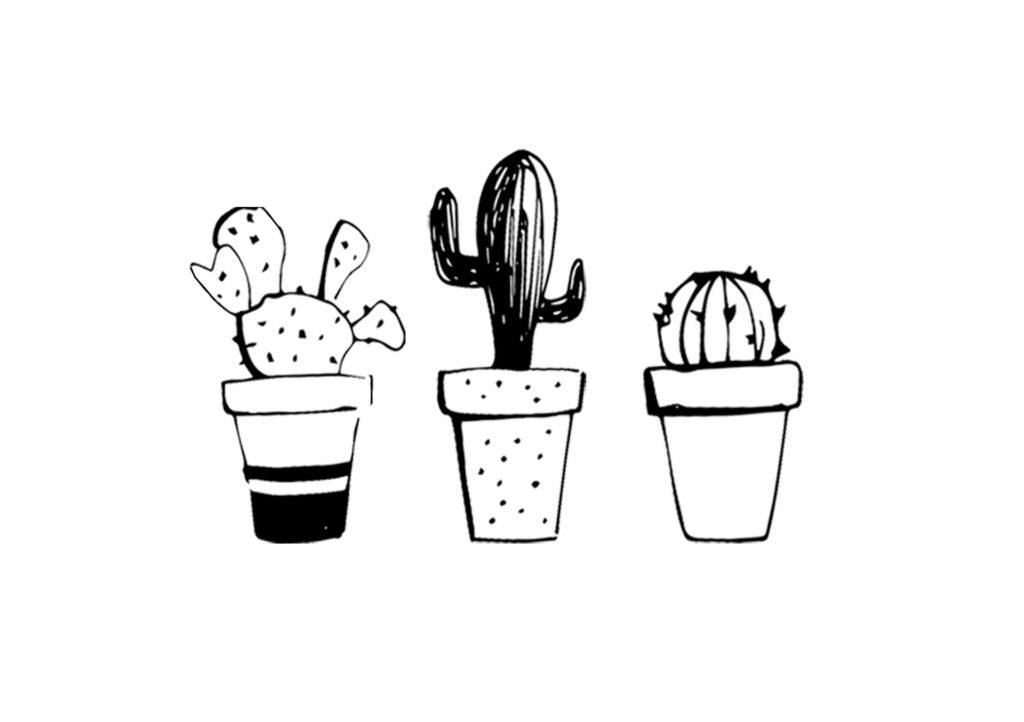 dessin cactus