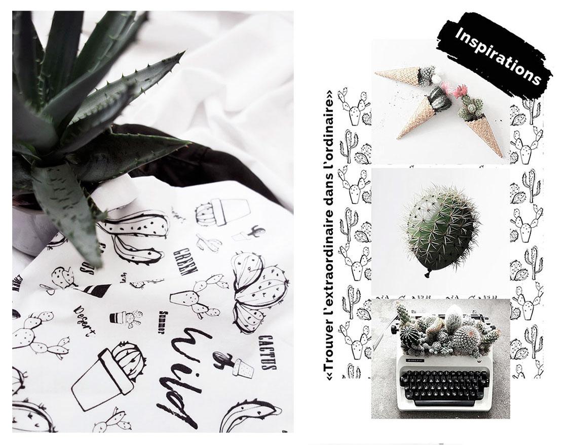 Inspirations cactus
