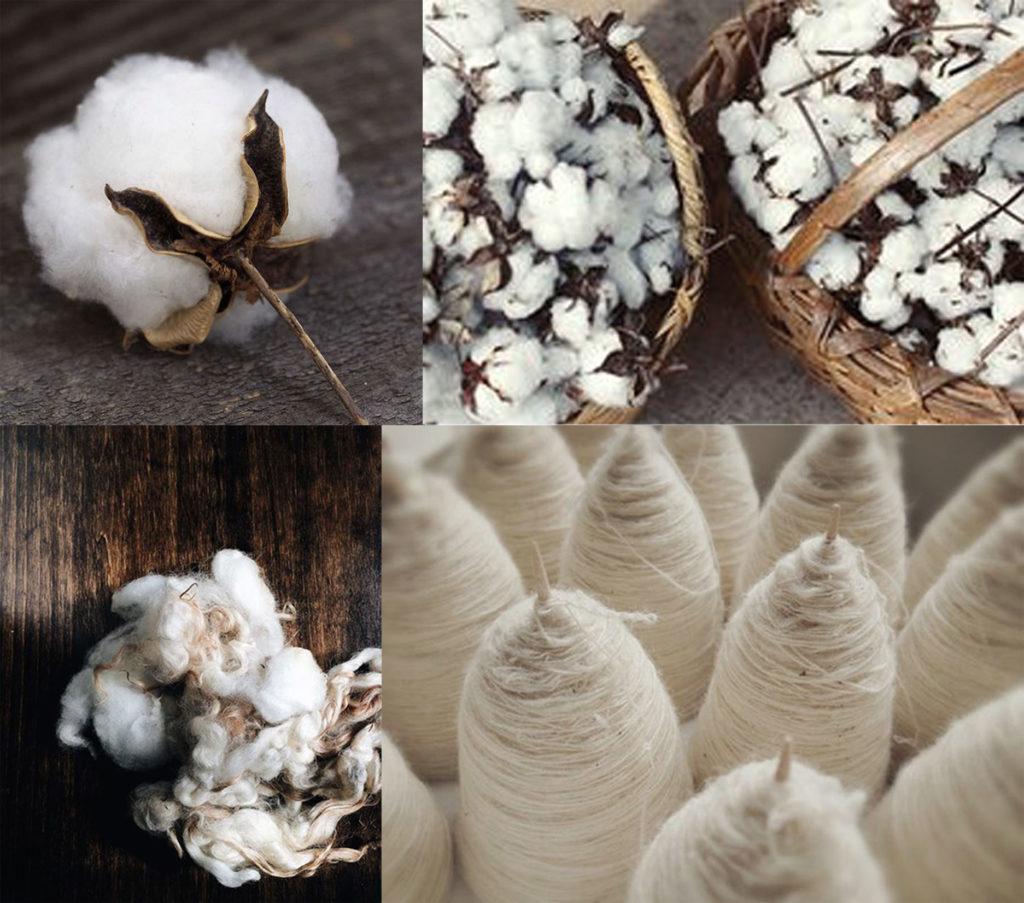 Fabrication coton bio