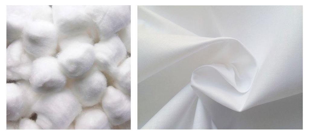fibre coton